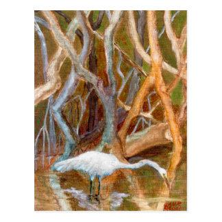 """""""Mangrove Egret No. 4"""" Postcard"""