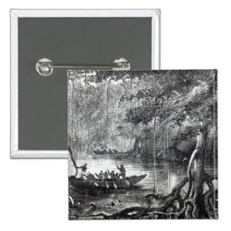 Mangrove Forest' Button