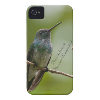 Mangrove Hummingbird iPhone 4 Cover