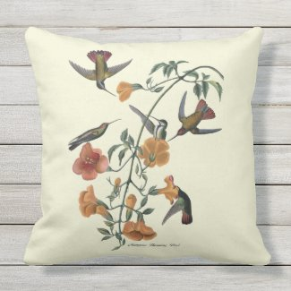 Mangrove Hummingbird Textured Outdoor Pillow 20x20