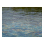 Mangrove Lagoon Water Caribbean Photo Poster