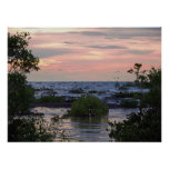 Mangrove Sunset Print
