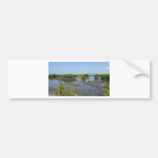 mangroves bumper sticker