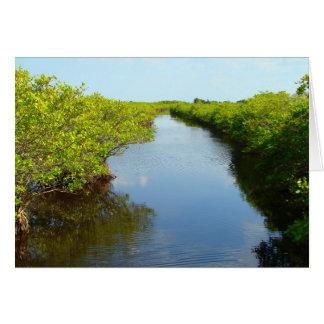 Mangroves Card