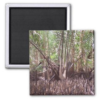 Mangroves Fridge Magnet