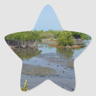 mangroves star stickers