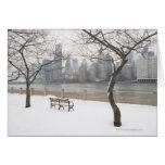 Manhattan en el invierno tarjetas