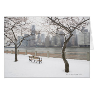Manhattan in the Winter Greeting Card