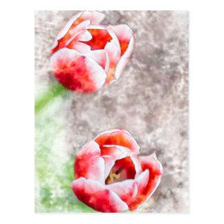 Manhattan Red Tulips Watercolor Postcard