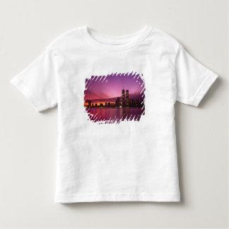 Manhattan Skyline and Hudson River, New York, T-shirt
