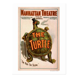 Manhattan Theatre New York Broadway The Turtle Postcard
