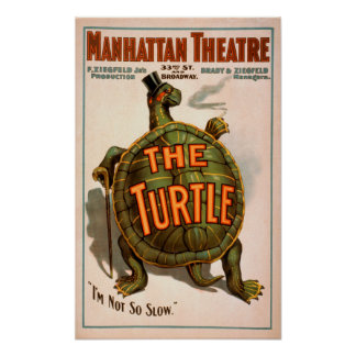 Manhattan Theatre New York Broadway The Turtle Poster