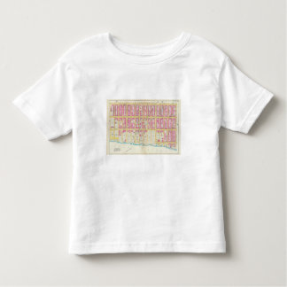 Manhatten, New York 14 Toddler T-shirt
