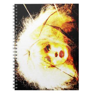 Manic Kin 4 Spiral Notebooks