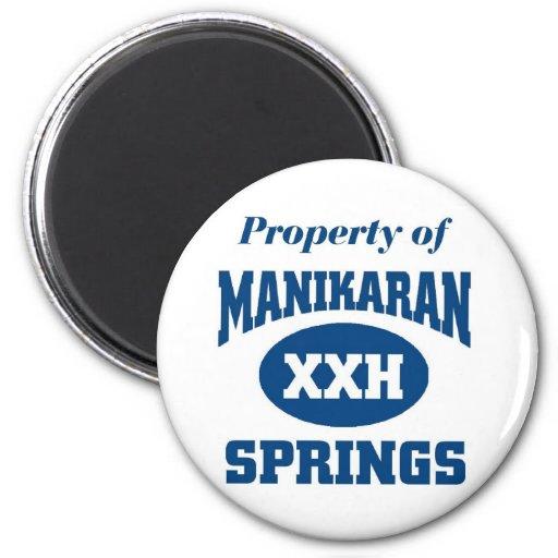 Manikaran Hot Springs Refrigerator Magnet