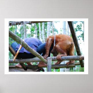 Manitas indonesia de la selva tropical impresiones