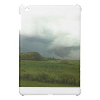 Manitoba Storms iPad Mini Covers