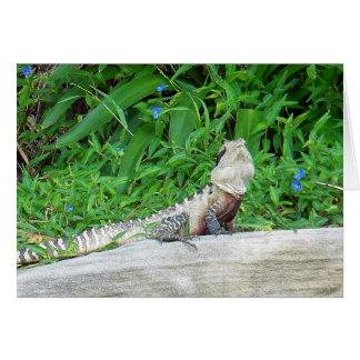 Manly Lizard Card