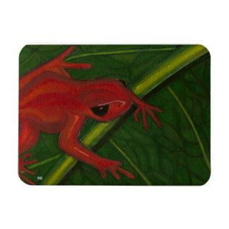 Manny The Mantella (Frog) Magnet