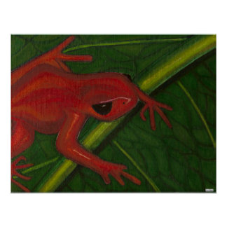 Manny The Mantella (Frog) Poster