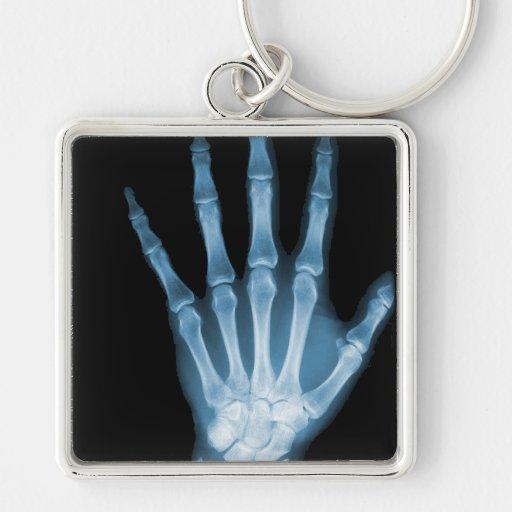 Mano azul del esqueleto de la radiografía llaveros