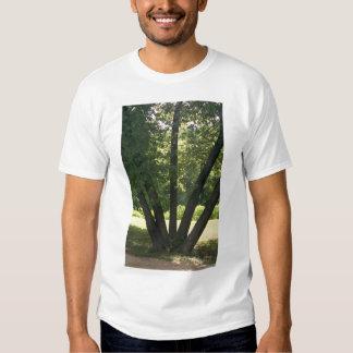 Mano de la camiseta de los hombres de la playera