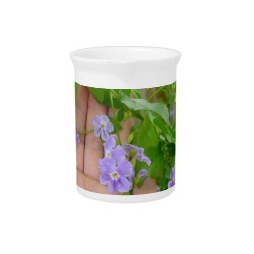 Mano, flores púrpuras, hojas jarrón