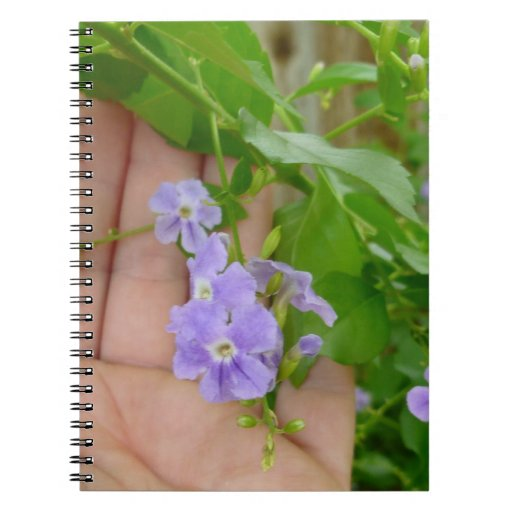 Mano, flores púrpuras, hojas libretas