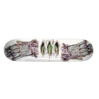 mano grande, garras grandes patin personalizado