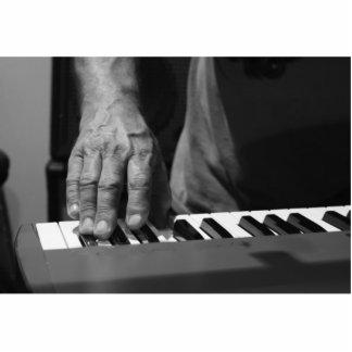 mano que juega música del varón del bw del teclado escultura fotográfica