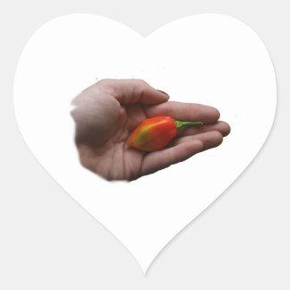 Mano que sostiene un pimiento picante 1 del pegatina de corazon personalizadas