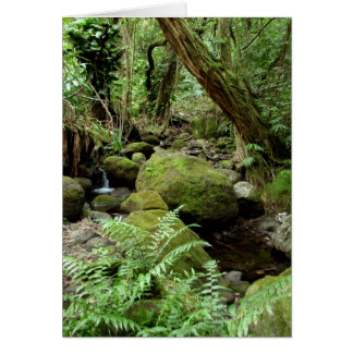 Manoa Stream Card