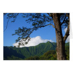 Manoa Valley Greeting Card
