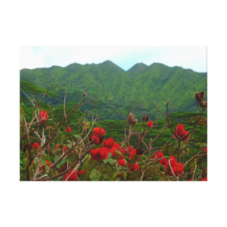 Manoa Valley Hawaii Stretched Canvas Prints