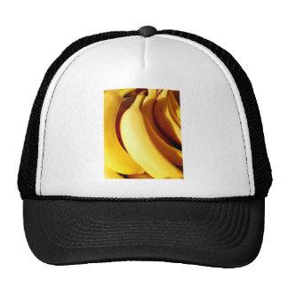 Manojo amarillo fresco brillante de plátanos madur gorro de camionero