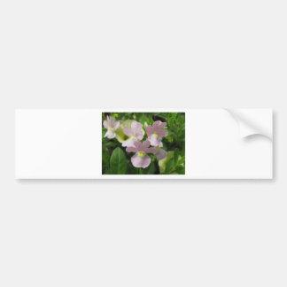 Manojo de flores blancos delicados que soplan el v pegatina de parachoque