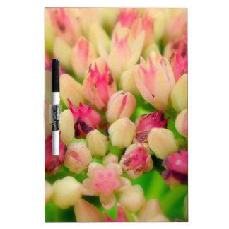 Manojo de flores tablero blanco