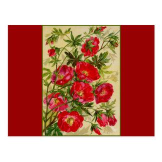 Manojo de flores rojas postal