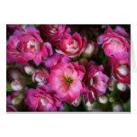 Manojo de flores rosadas felicitaciones