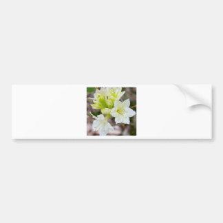 Manojo de flores salvajes blancas pegatina para auto