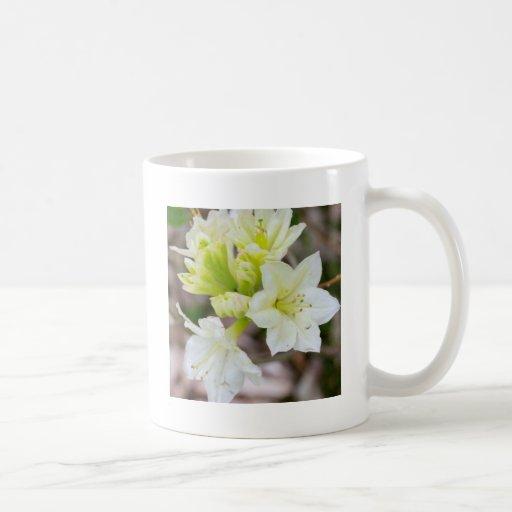 Manojo de flores salvajes blancas tazas de café