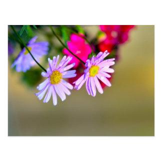 Manojo de flores tarjeta postal