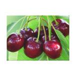 Manojo de la cereza en árbol lona envuelta para galerías