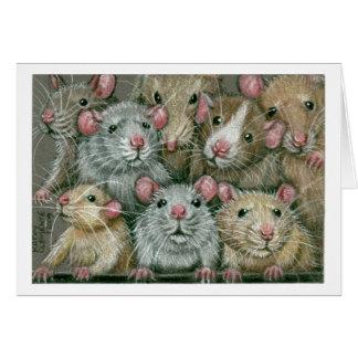 Manojo de ratas en la reunión Notecard de Rattie