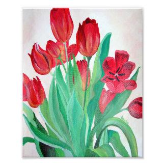 Manojo de tulipanes rojos impresiones fotograficas