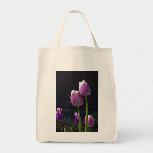 Manojo de tulipanes rosados bolsas