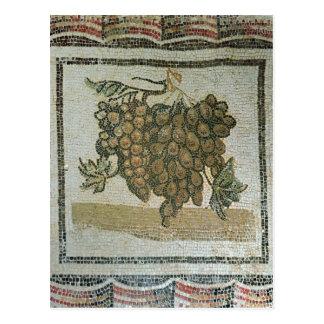 Manojo de uvas blancas mosaico romano tarjetas postales