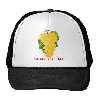 Manojo de uvas gorras