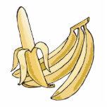 manojo del plátano escultura fotografica