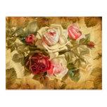Manojo hermoso de rosas en fondo del vintage tarjetas postales